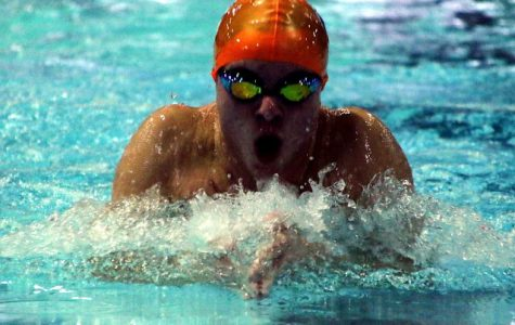Spartans swim and dive for a successful season