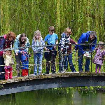 The world pooh sticks championship in England (above) and young elementary school children (below) standing on bridges waiting to participate in a traditional game of Poohsticks.