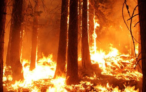 Natural disasters strike CA