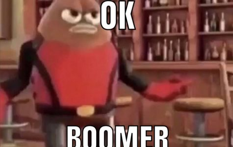 "Is ""OK Boomer"" okay, boomers?"