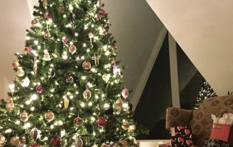 Many families get into the holiday spirit by putting Christmas trees up after Thanksgiving, or even after Halloween, as well as going out to buy presents for their families and friends.