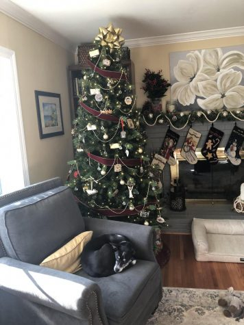 This is the first time the Griffin family has had a fake tree as their main tree, as they usually put up both a real tree and a fake one for the holidays.